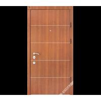 Дверь входная бронированная Страж коллекции Synergy Solo