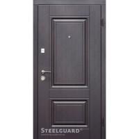 Дверь входная бронированная Steelguard Серия RESISTE DO-30