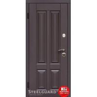 Дверь входная бронированная Steelguard Серия RESISTE Balta