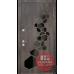Дверь входная бронированная Страж коллекции Diamant Insula